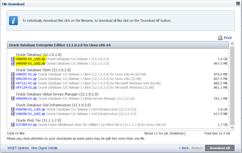Downloading any file to the browser using ASPNET